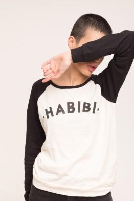 Habibi TSML